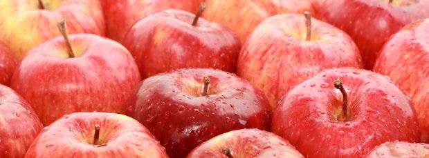 www.jamowie.to Jamówię.to jabłko produktywny dzień