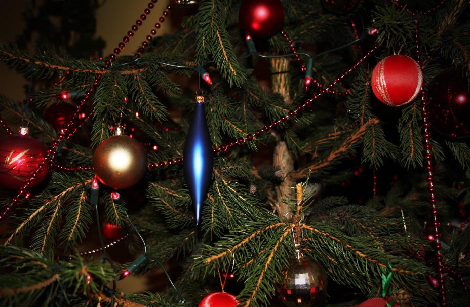 Jak zostać świątecznym ekspertem?