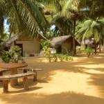 Na Zachodzie gorąco [Sri Lanka]
