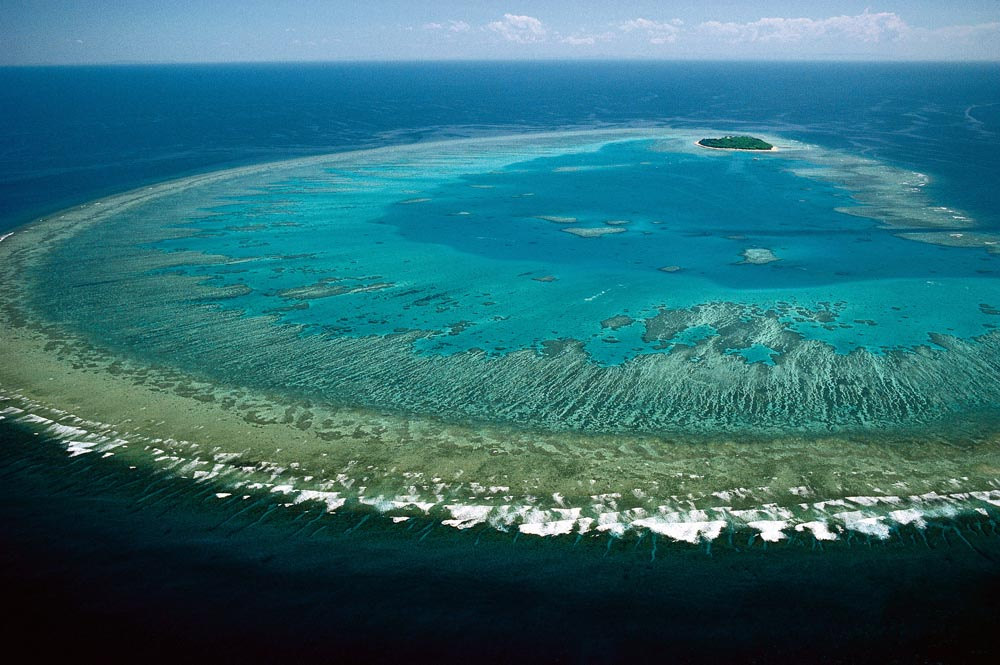 Czy zagłada Wielkiej Rafy Koralowej jest nieunikniona?
