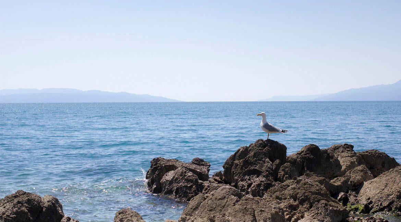 Rijeka wjeden dzień – co zobaczyć wRijece?