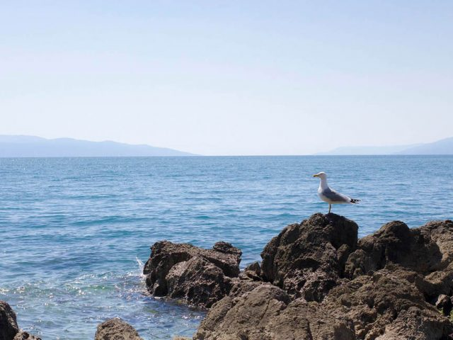 Co zobaczyć w Rijece? Rijeka w jeden dzień - www.jamowie.to Ja mówię TO